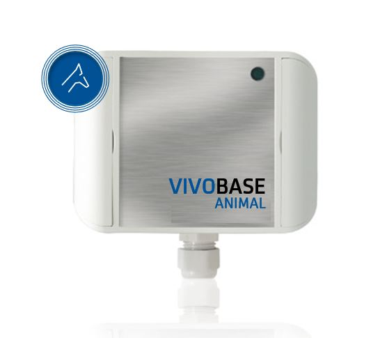 VIVO BASE Animal